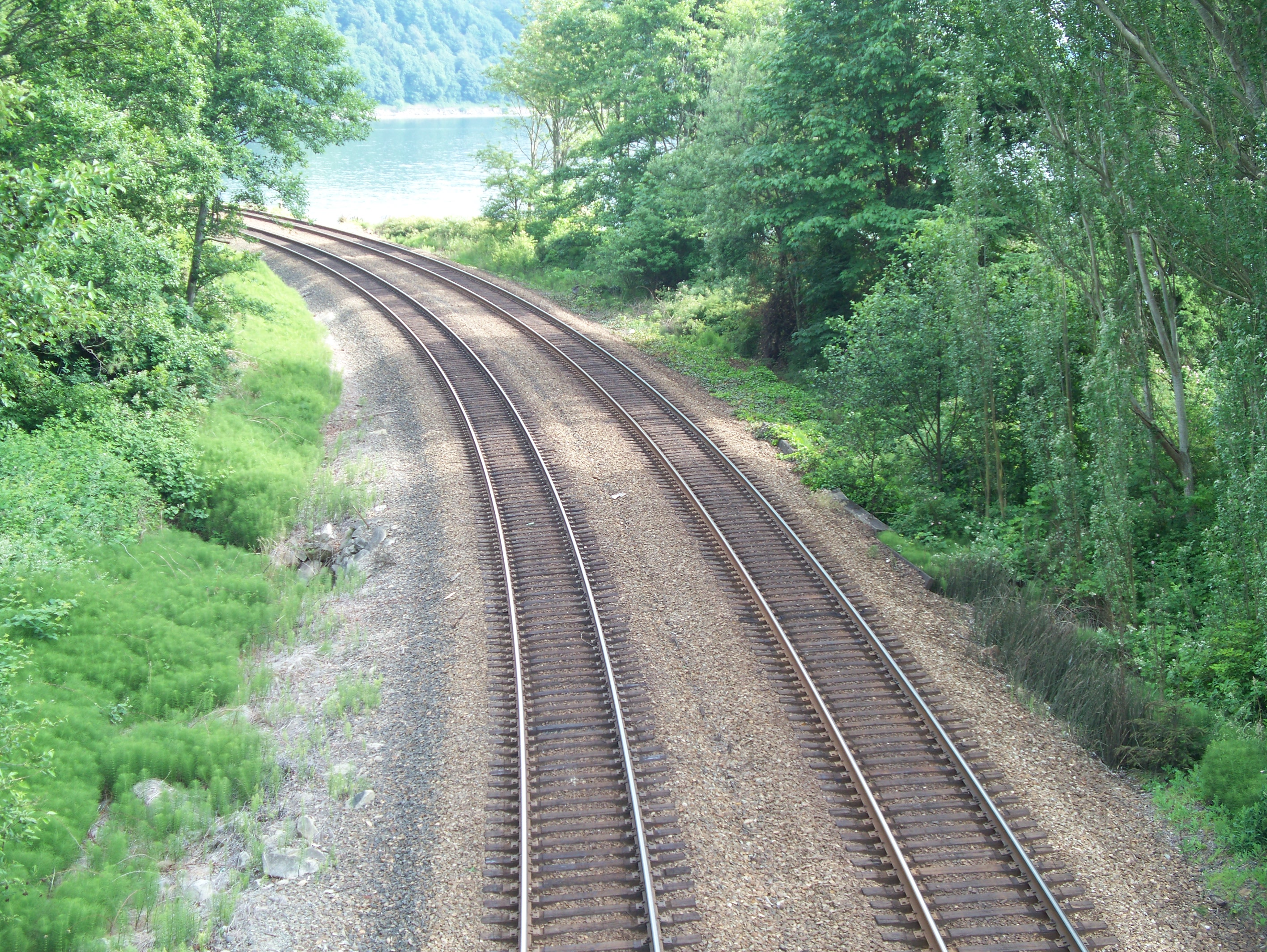 https://en.wikipedia.org/wiki/File:Twin_track_of_train_rails_in_a_wooded_area.JPG#mediaviewer/File:Twin_track_of_train_rails_in_a_wooded_area.JPG