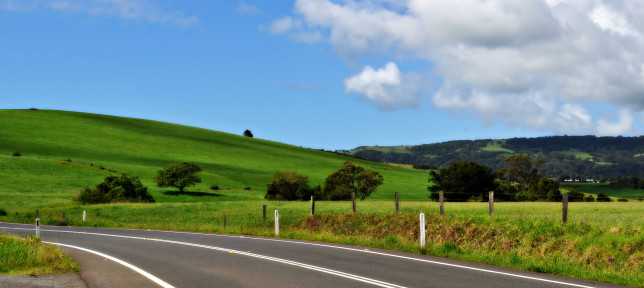 Landscape near Robertson, NSW. Image: Gypsy Rose