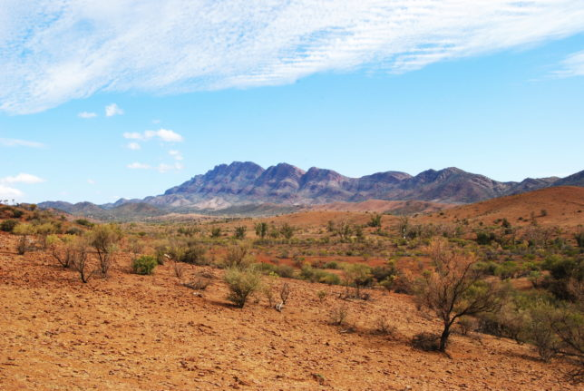 Pastoral land in the Flinders Ranges near Port Augusta. Image: Peripitus